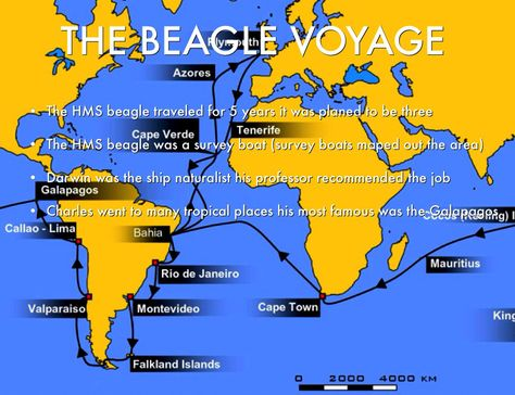 The Voyage Of The Beagle In 1831 On The 27th Of September The