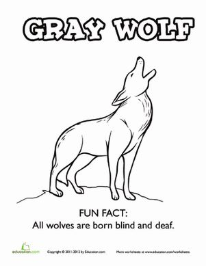 Howling Wolf Coloring Page Wolf Howling Wolf Color Activities