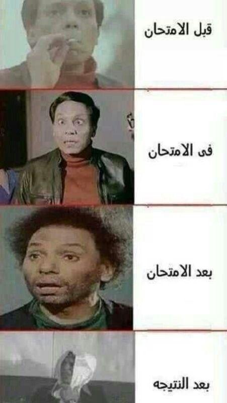 صور مضحكة و طريفة و أجمل خلفيات مضحكة Hd بفبوف Funny Arabic Quotes Jokes Humor