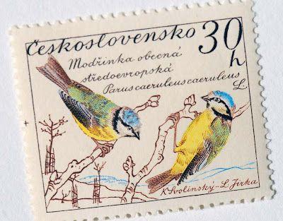 Letterology: Birds and Words