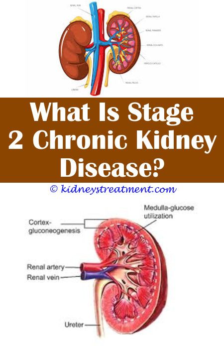 Kidney Disease Renal Chronic Kidney Disease Kidney Disease Symptoms Kidney Disease