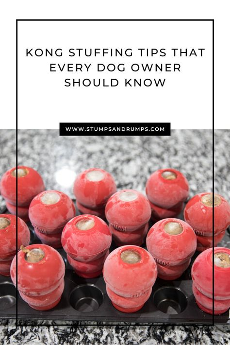 Check out these easy DIY dog frozen kong stuffing recipes that every dog owner should know. Puppy Treats, Diy Dog Treats, Homemade Dog Treats, Dog Treat Recipes, Dog Food Recipes, Pumpkin Dog Treats, Puppy Food, Kong Treats, Dog Enrichment
