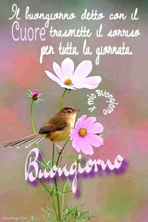 Buongiorno a te - ImmaginiFacebook.it - #buongiorno #ImmaginiFacebookit #te