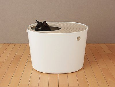 Iris Top Entry Cat Litter Box White Large Chewy Com Litter Box Cat Litter Best Litter Box