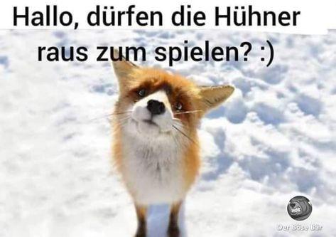 Germanenherz | Was mein Herz bewegt, bewegt vielleicht auch andere.