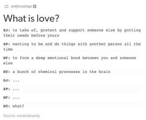 intj dating intp