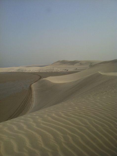 Desert In Qatar Outdoor Beach Photo