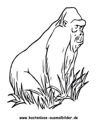 Ausmalbild Gorilla Ausdrucken Ausmalen Ausmalbilder Tiere Ausmalbild