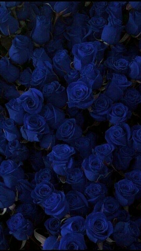 RosesBlue - #