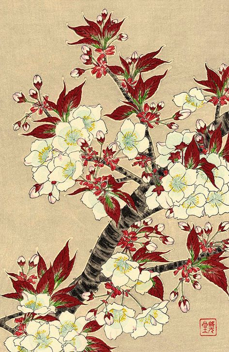 Japanese Flowers Home Wall Picture Art Print