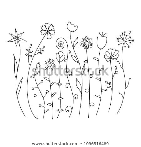 Hand Drawn Wild Flowers Sketch Set Isolated On White Background
