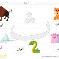 بطاقة عرض ملونة حرف الثاء صور لكلمات تبدأ بحرف الثاء شمسات Baby Mobile
