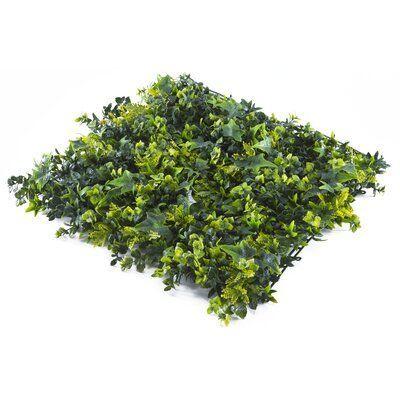 Gracie Oaks Variegated Ivy Grass Modern Design Garden Backdrops Artificial Boxwood Artificial Foliage
