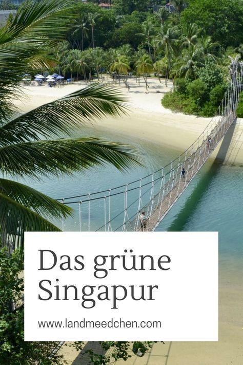 Das grüne Singapur. #Singapur #SingapurUrlaub #SingapurTipps #SingapurReise #SingapurAusflüge #SingapurReisetipps #SingapurmitKindern