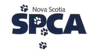 Halifax Man Charged With Animal Cruelty Spca How To Raise Money