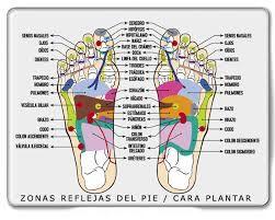 Mapa Reflexologia Podal Pdf.Resultado De Imagen Para Reflexologia Podal Pdf Gratis