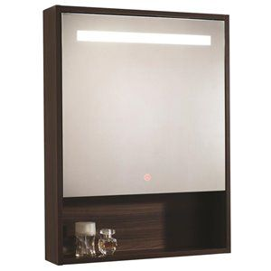 Moorefield Led Series 22 8 In X 29 9 In Rectangle Surface Medicine