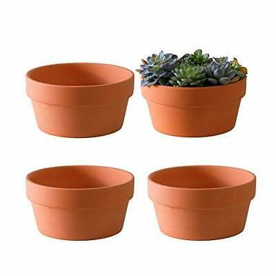 Sponsored Link Terracotta Shallow Planters For Succulent 7 Inch Cactus Plant 7 Inches In 2020 Container Plants Clay Plant Pots Pottery Planters