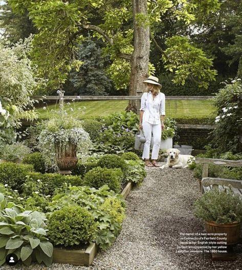 Camille's Backyard Kitchen Garden – Part 1