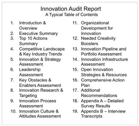 The Innovation Audit  Innovation Now    Service Design