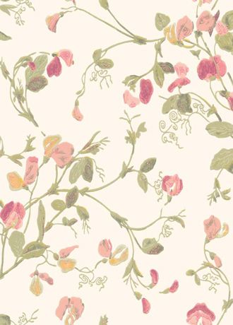 Sweet Pea A Wallpaper From Cole And Son 100 6028 Blommig