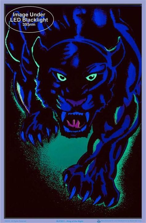 Black Panther King of the Night - Black Light Poster