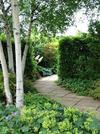 Courtyard Garden Ideas Shady And Cheap Front Garden Ideas Birch Trees Garden Landscape Design Garden Design