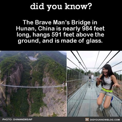 did-you-kno: Each of the glass panes is 24 millimeters thick and 25 times stronger than normal glass. One of the workers who constructed the bridge says: The bridge we build will stand firm even if tourists are jumping on it The steel frame used to support and encase the glass bridge is also very strong and densely built so even if a glass is broken travelers wont fall through. Speaking of construction workers OMGWTF! Some people are pretty chill with it. Still looks like a whole lot of N