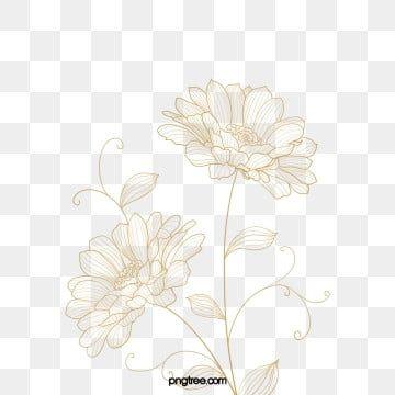 Golden Line Line Drawing Flower Flowers And Plants Plant Leaf Element Flowers Line Drawing Flower Clipa Flower Line Drawings Flower Drawing Flower Illustration