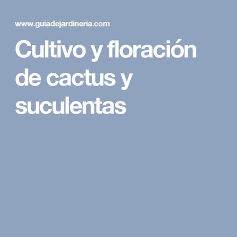 Cultivo y floración de cactus y suculentas