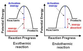 Pin By Hasni Haleem On Education Exothermic Reaction Chemistry Lessons Chemistry Experiments