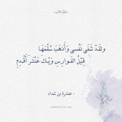 شعر عنترة بن شداد ولقد شفى نفسي وأبرأ سقمها عالم الأدب Arabic Calligraphy