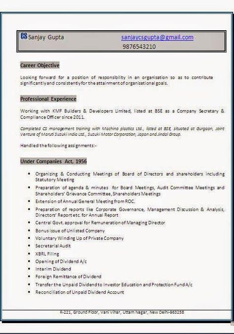 example professional resume Sample Template Example ofExcellent - private company audit report