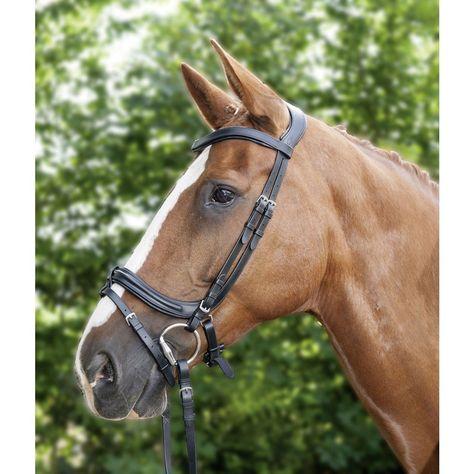 Gray with Aqua Kathryn Lily Equestrian Harrisburg Jacket