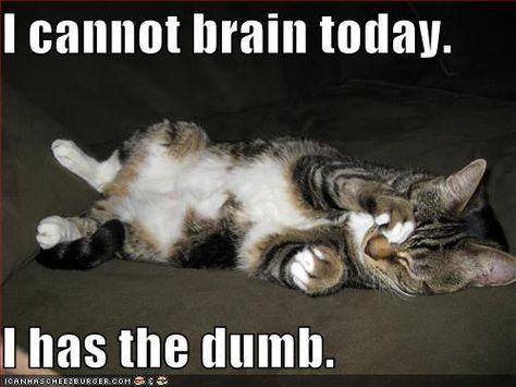 Every Monday.