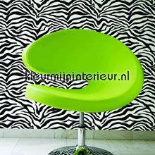 Zebra Print Behang.Pinterest Pinterest