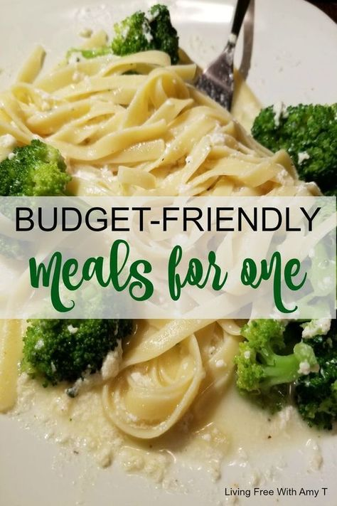 Eating alone for dinner doesn't have to be a pain. Here are easy, #budget #friendly #recipes for one person!