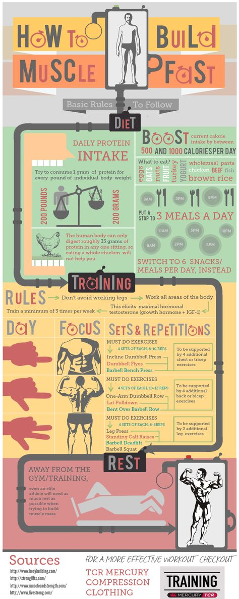 How to Build Muscle Fast via @Tribesports #fitness #infographic