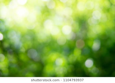 Green Bokeh On Nature Abstract Blur Background Green Bokeh From Tree Bokeh Background Picsart Background Blurred Background