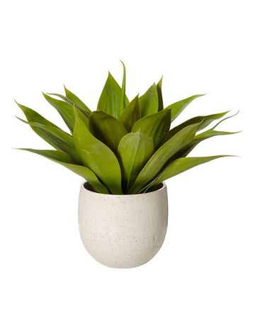Artificial Flowers Botanicals Myer Artificial Flowers Indoor Plants Flowers