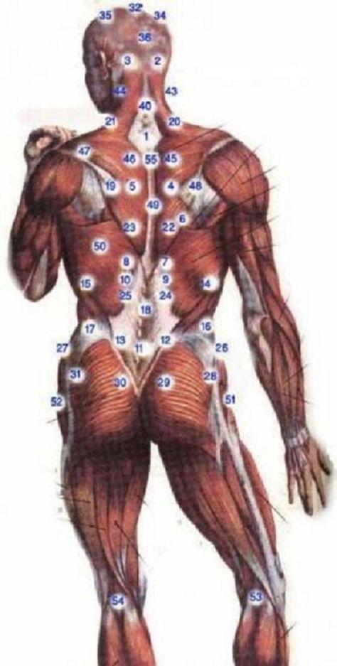 Tratamentul cu ventuze pentru masaj, o metoda utila pentru a slabi sanatos