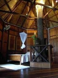 image result for treehouse masters irish cottage