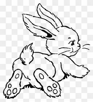Transparent Bunny Clipart Black And White Drawing Easter Bunny Art Png Download Bunny Art Black And White Drawing Clipart Black And White