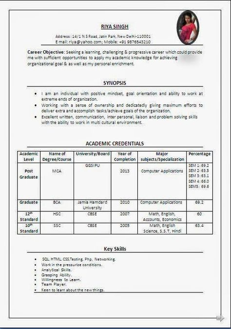 curriculum vitae student Sample Template Example ofExcellent - resume format for mca student