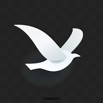 White Dove Illustration White Pigeon Illustration Png Transparent Clipart Image And Psd File For Free Download Dove Images Geometric Poster Peace Dove