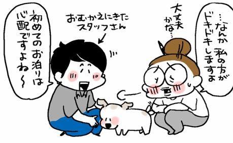 Diy ネコ脱出防止扉 昼寝 猫フェンス 動物 漫画