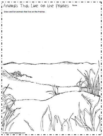 Prairie Animals Worksheet With Images Animal Habitats Animal