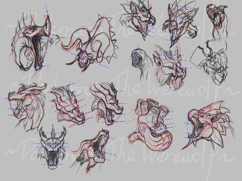 Dragon head perspective (With Monster Hunter) by DarkmaneTheWerewolf.deviantart.com on @deviantART