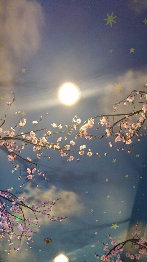 Phone wallpaper lockscreen cherry blossom sky ceiling painting