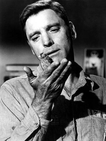 Photo Birdman Of Alcatraz Burt Lancaster Poster 24x18in In